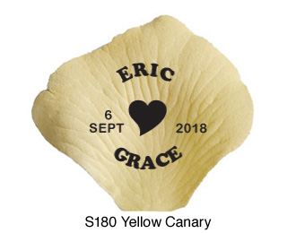 S180 Yellow-Canary