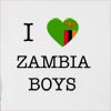I Love Zambia Boys Hooded Sweatshirt