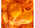 Orange Tangerine Freeze Dried Rose Petals Wedding Medium Case 64 cups