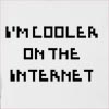 I'M Cooler On The Internet Hooded Sweatshirt