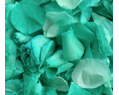 Pool Green Freeze Dried Rose Petals Wedding Small Case 8 cups