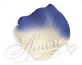 1000 Silk Rose Petals Laguna Light ivory and Royal Blue