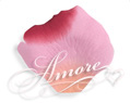 Mirage Apricot Pink Red Silk Rose Petals Wedding 1000