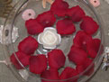 Burgundy Floating Silk Rose Petals Wedding 200
