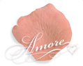 Apricot Light Terracotta Silk Rose Petals Wedding 600