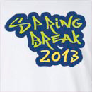 Spring Break 2013 Long Sleeve T-Shirt