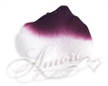 1000 Silk Rose Petals Luxor (Eggplant and White)