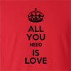 All You Need Is Love Funny T Shirt