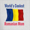World's Coolest Romanian Mom Hooded Sweatshirt