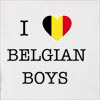 I Love Belgium Boys Hooded Sweatshirt