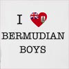 I Love Bermuda Boys Hooded Sweatshirt