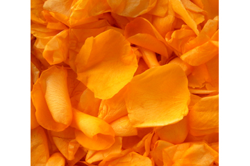 Orange Tangerine Freeze Dried Rose Petals Wedding Small Case 8 cups