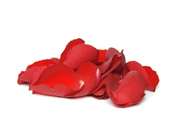 Red Fresh Rose Petals Wedding 250