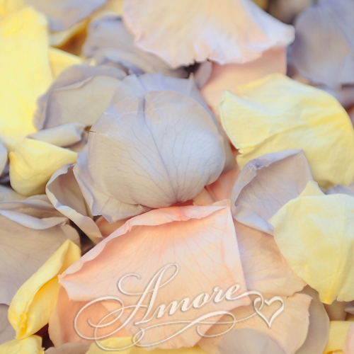 Pink Lavender Ivory Freeze Dried Rose Petals Wedding Medium 24 cups