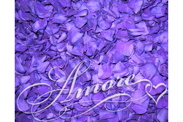 5Lb Freeze Dried Rose Petals Purple Plum