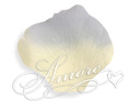 Blue Angel  Silk Rose Petals Wedding 4000