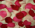 Valentine Mix Fresh Rose Petals Wedding 1000