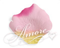 Paradise Yellow Pink Fuschia Silk Rose Petals Wedding 2000