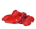 Red Fresh Rose Petals Wedding 2000