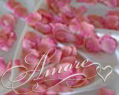 Coral Silk Rose Petals Wedding 200