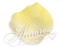 Moonlight Light Ivory and Yellow Silk Wedding Rose Petals Bulk 10000