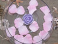 Double Pink Floating Silk Rose Petals Wedding 200