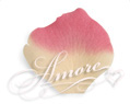 Dreamland Butter and Fuschia Silk Rose Petals Wedding Bulk 10000