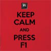 Keep Calm And Press F1 Hooded Sweatshirt