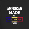 American Made of Moldovan Parts