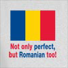 Not Only Perfect but Romanian Too! Hooded Sweatshirt