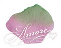 Green Pink Silk Rose Petals Wedding 1000