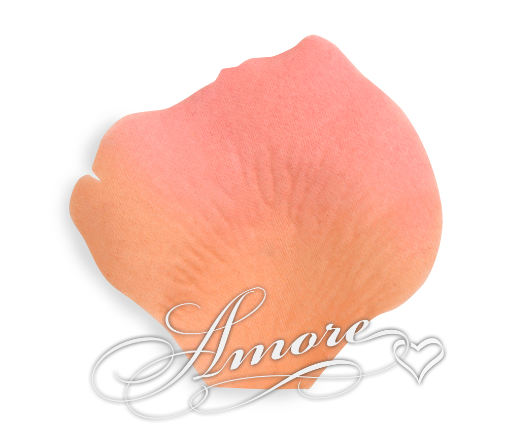 Coral Silk Rose Petals Wedding 600