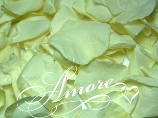 Light Green Pistachio Freeze Dried Rose Petals Wedding 5lb