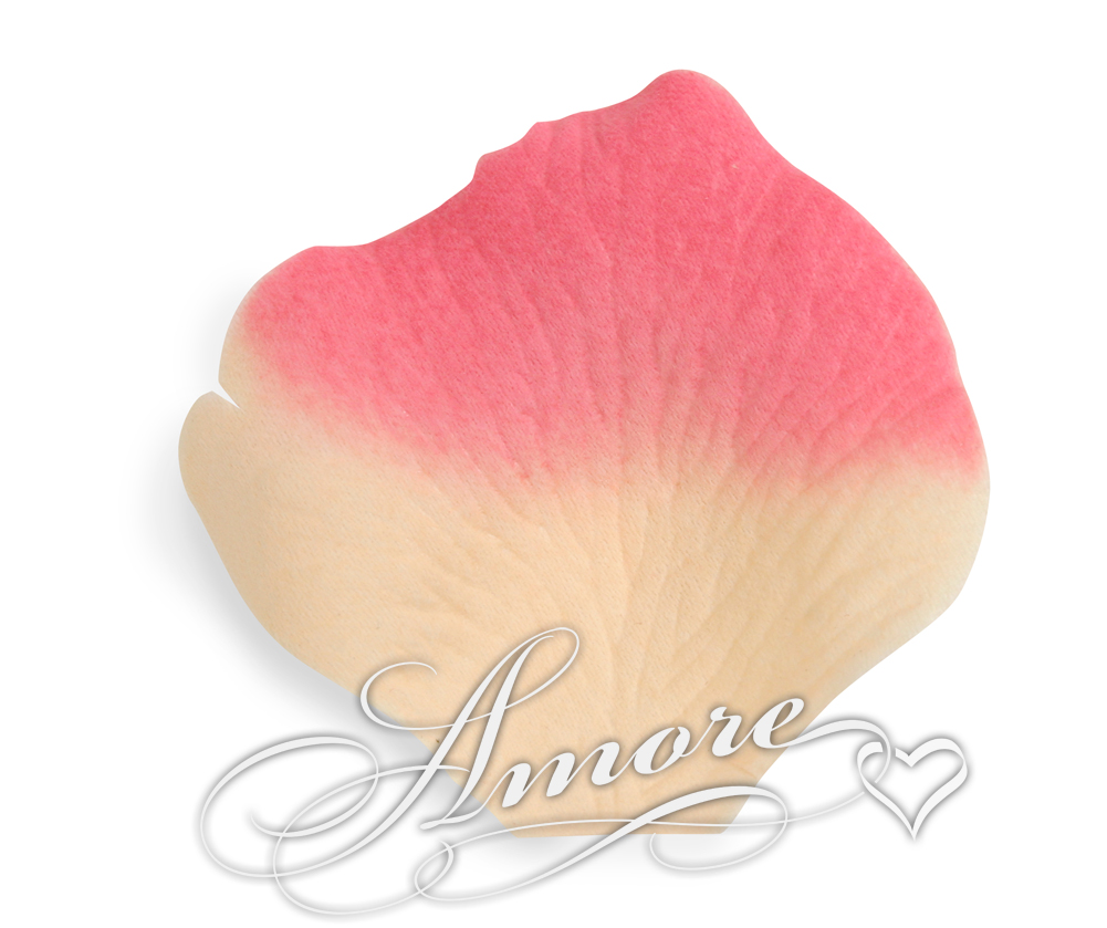 Dreamland Butter and Fuschia Silk Rose Petals 200