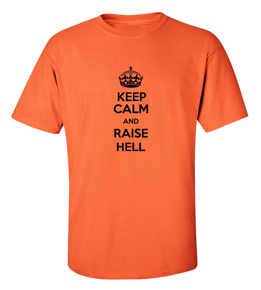 Drink Lots And Raise Hell Funny T Shirt