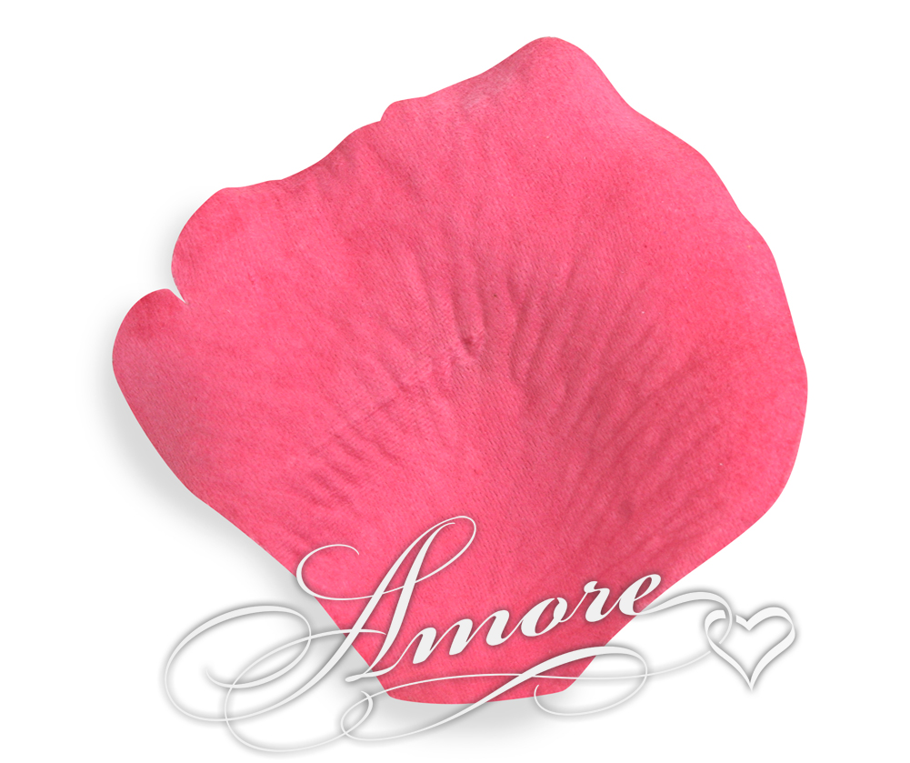 Watermelon Fuchsia Silk Rose Petals Wedding 600