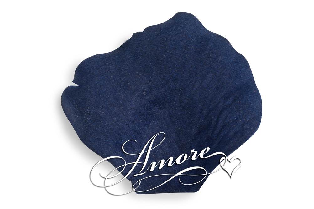 Navy Blue Silk Rose Petals Wedding 2000