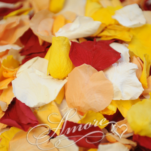 Candy Corn Freeze Dried Rose Petals Wedding Medium Case 24 cups