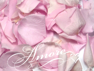 Double Pink Freeze Dried Rose Petals Wedding 1lb