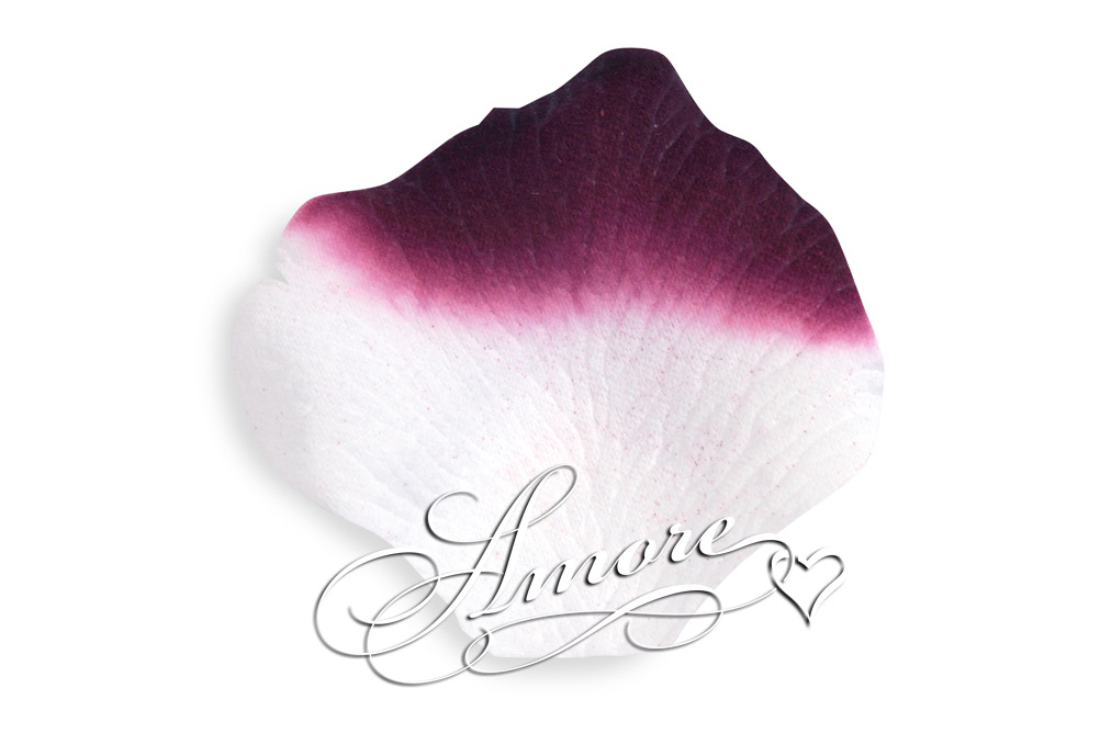 Luxor Eggplant and White Silk Wedding Rose Petals 600