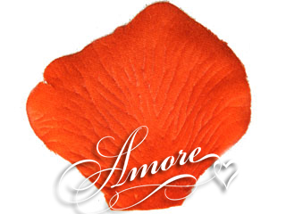 Palm Beach Coral Silk Rose Petals Wedding 2000