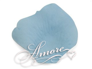 Pool Blue Aqua Silk Rose Petals Wedding 2000